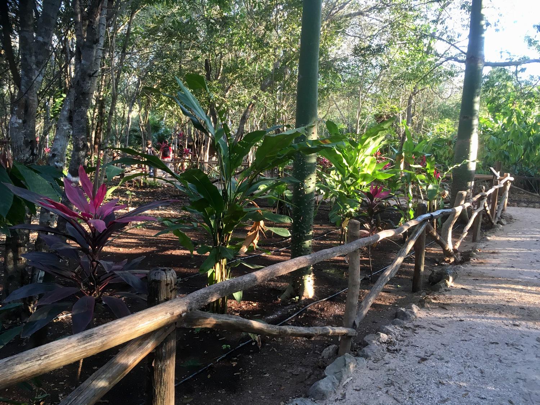 Hammocks_and_Ruins_Riviera_Maya_Mexico_Explore_What_to_Do_Yucatan_Hammocks_Ruins_Choco_story_Uxmal_12.jpg