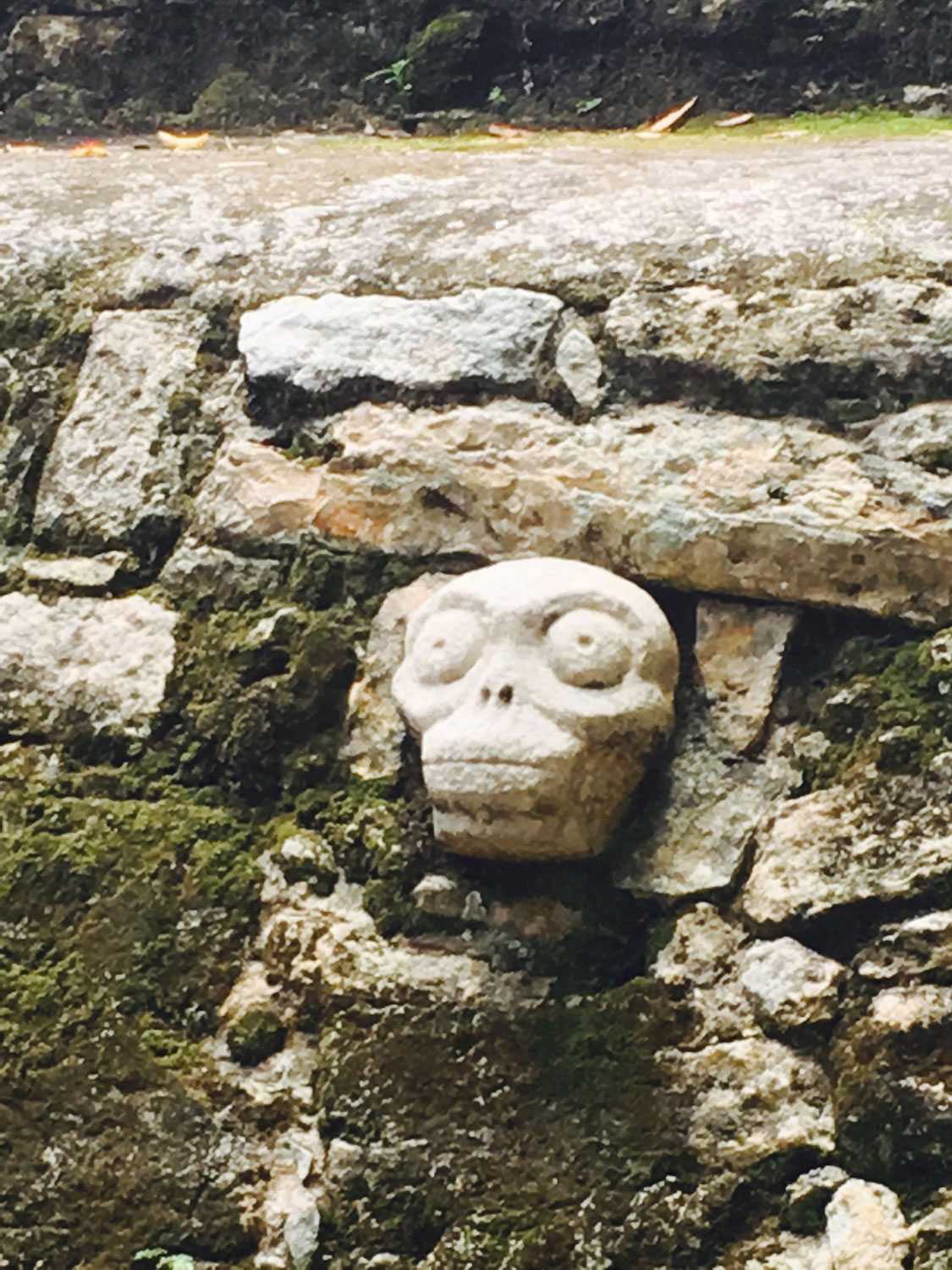 Skull in the side wall of the ball court in Cobá Group.