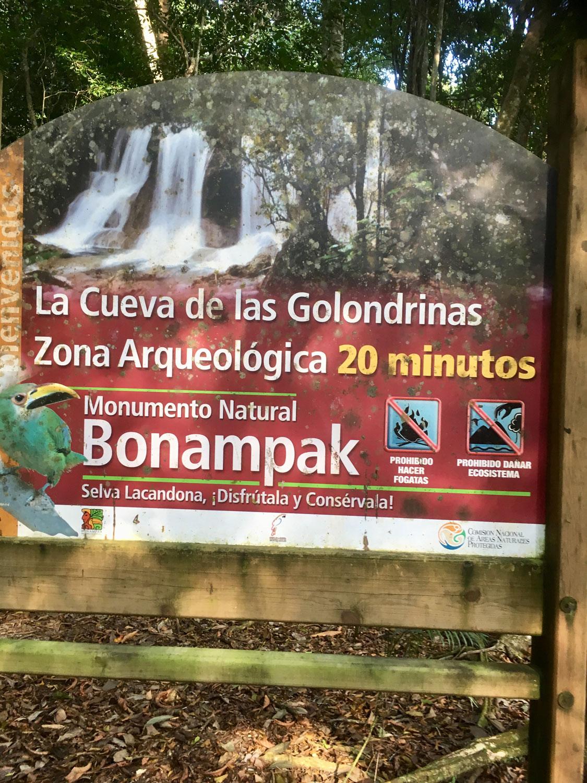 Hammocks_and_Ruins_Blog_Riviera_Maya_Mexico_Travel_Discover_Explore_What_to_do_Jungles_Lacanja_33.jpg