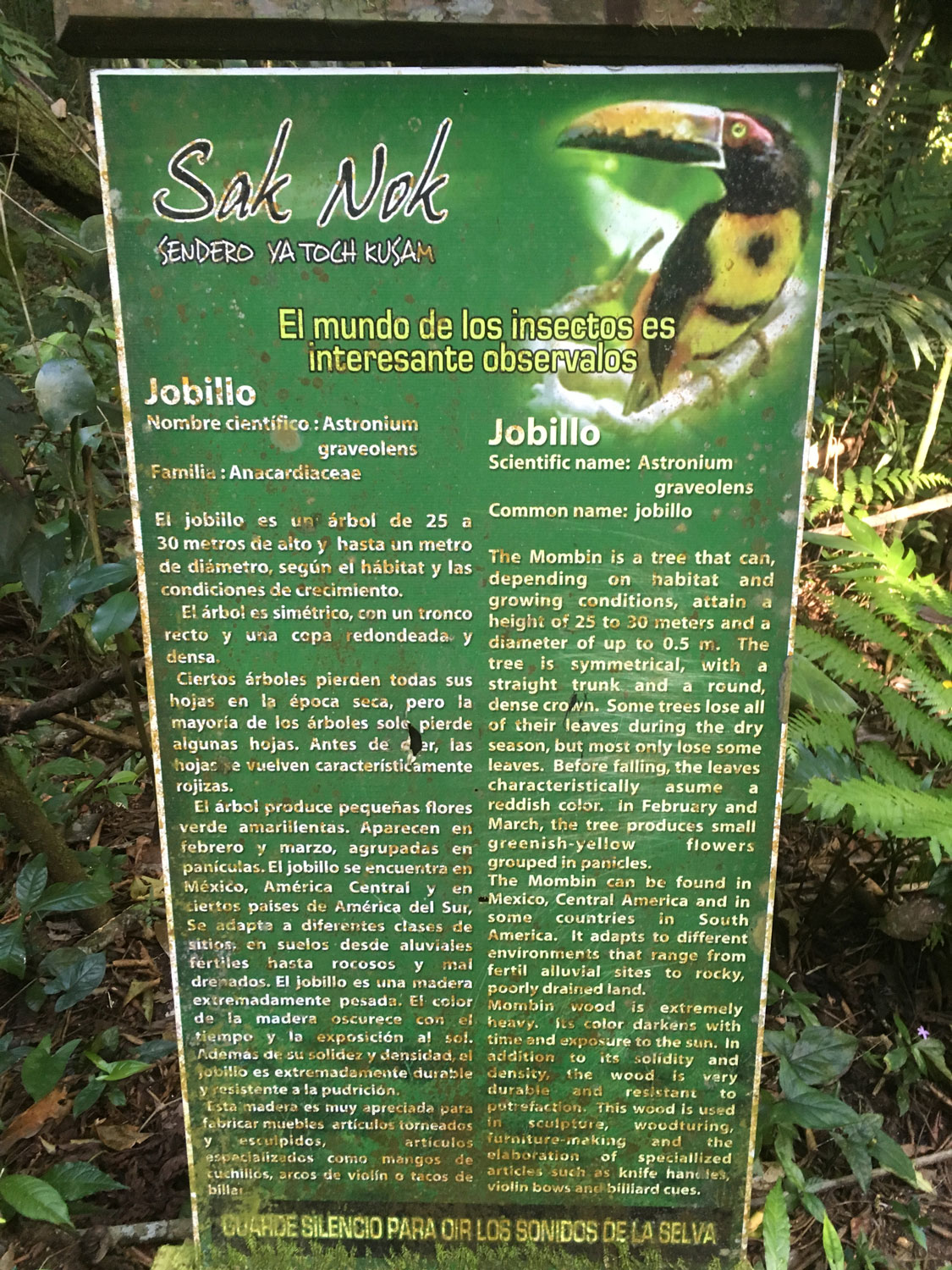 Information boards along the path.