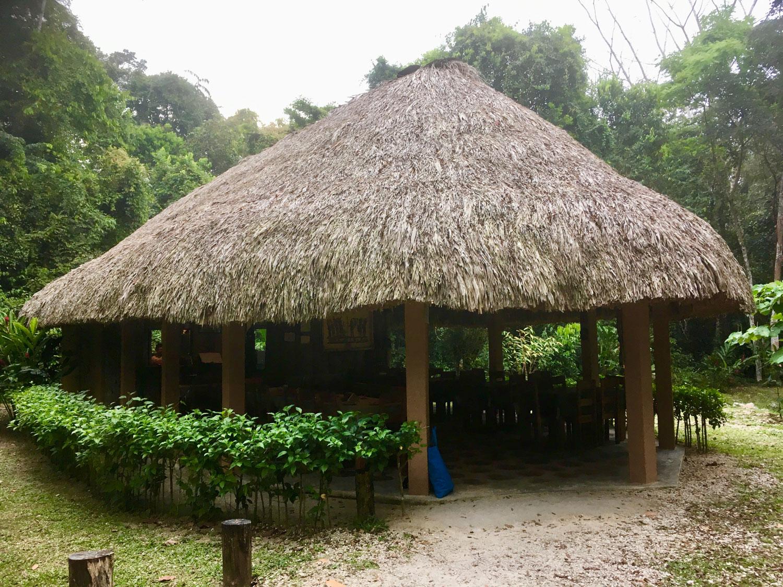 Hammocks_and_Ruins_Blog_Riviera_Maya_Mexico_Travel_Discover_Explore_What_to_do_Jungles_Lacanja_51.jpg