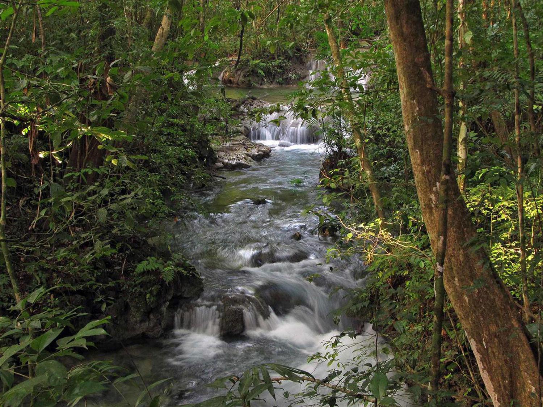 Hammocks_and_Ruins_Blog_Riviera_Maya_Mexico_Travel_Discover_Explore_What_to_do_Jungles_Lacanja_Ruins_2.jpg
