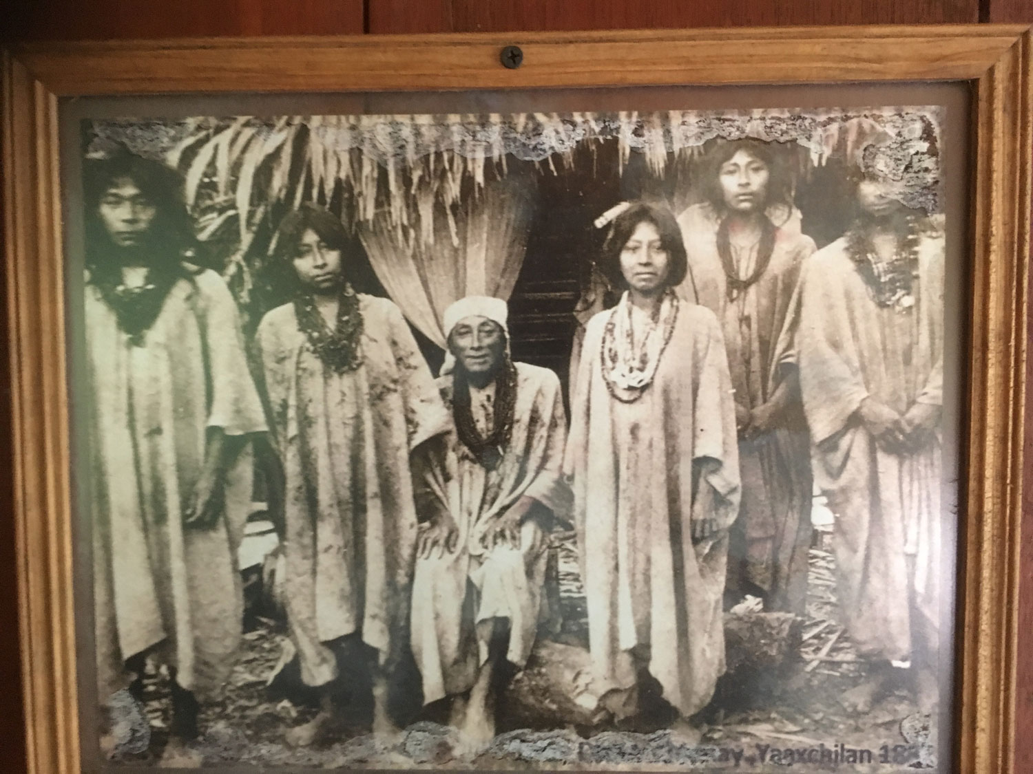A photo of Lacandón Maya on the wall of my cabaña in the camp.