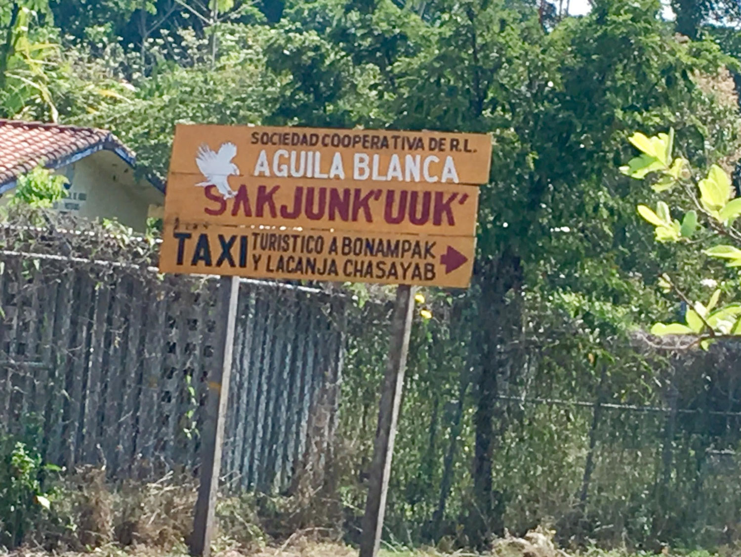 At San Javier village: a signpost for a taxi to Lacanjá Chansayab.