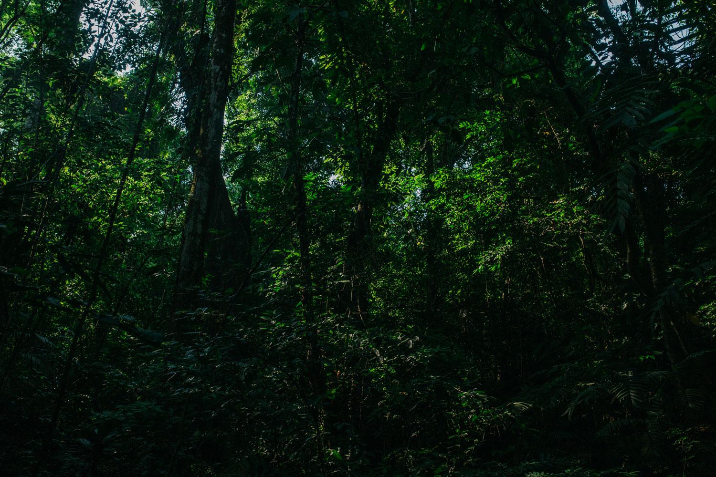 Hammocks_and_Ruins_Town_Villages_Chiapas_Lakes_Rivers_Jungles_Highlands_Ruins_Palenque_Maya_City_34.jpg