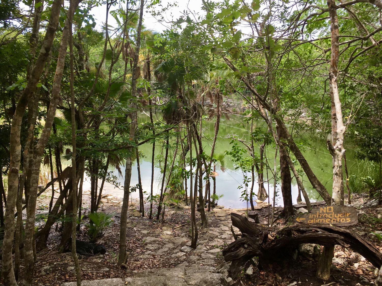 Hammocks_and_Ruins_Blog_Riviera_Maya_Mexico_Travel_Discover_Cenotes_Playa_del_Carmen_Tulum_Coba_Cenote_Trail_Las_Mojarras_3.jpg
