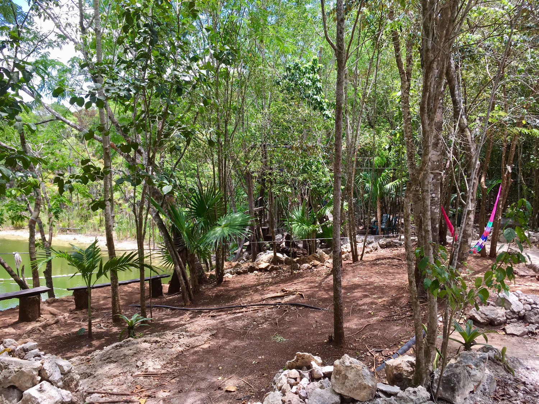 Hammocks_and_Ruins_Blog_Riviera_Maya_Mexico_Travel_Discover_Cenotes_Playa_del_Carmen_Tulum_Coba_Cenote_Trail_Las_Mojarras_10.jpg
