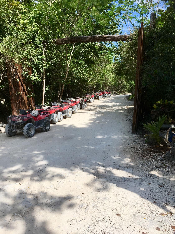 Hammocks_and_Ruins_Blog_Riviera_Maya_Mexico_Travel_Discover_Cenotes_Playa_del_Carmen_Tulum_Coba_Cenote_Trail_Las_Mojarras_23.jpg