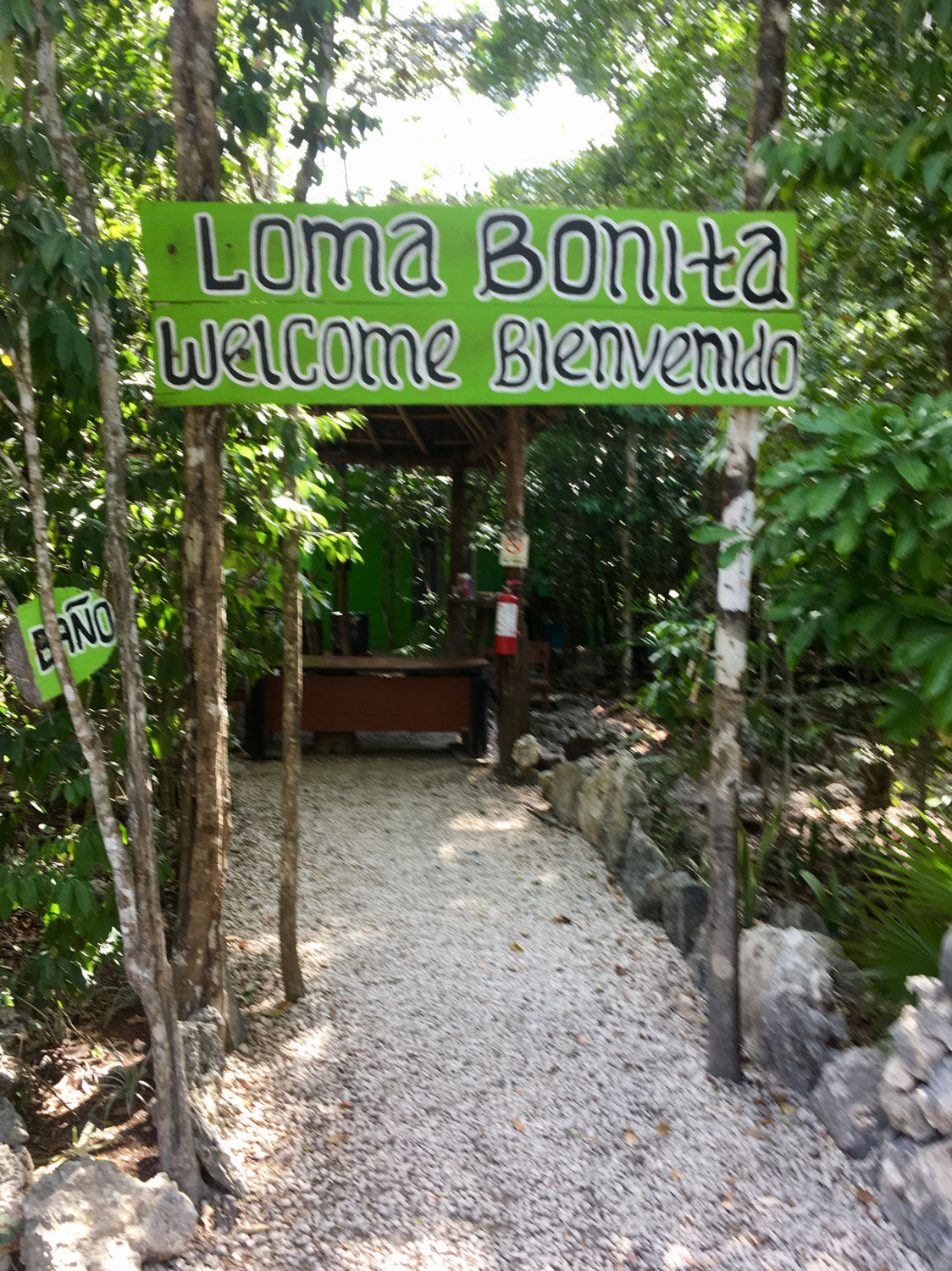 The entrance to the jungle experience with ATVs.