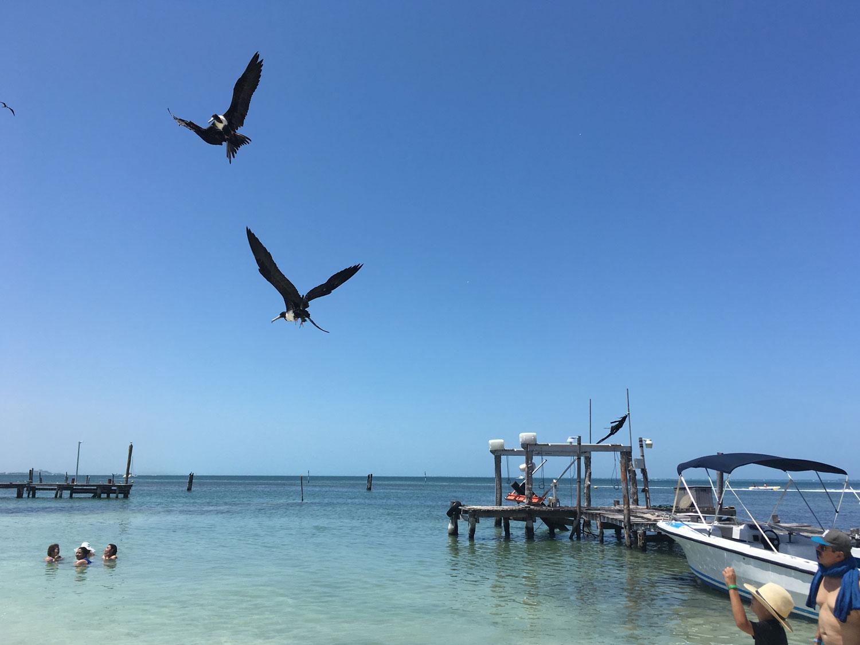 Hammocks_and_Ruins_Blog_Riviera_Maya_Mexico_Travel_Discover_Explore_Yucatan_Hammocks_Beaches_Near_Cancun_Playa_Linda_34.jpg