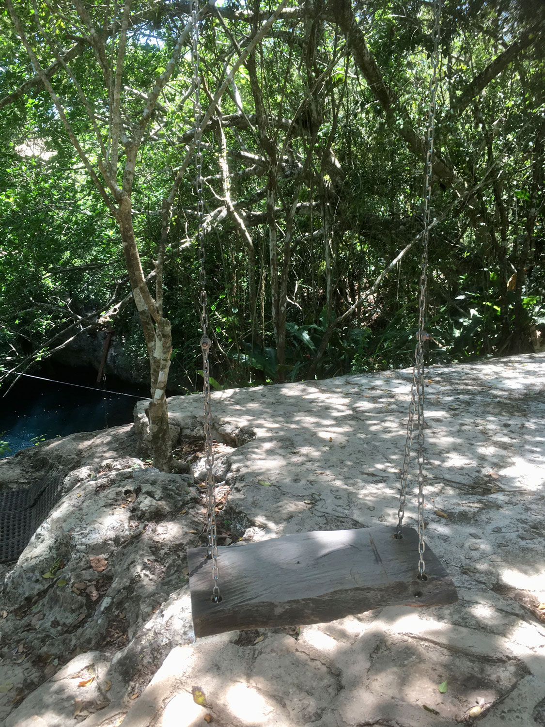 The swing platform at the 'back' of the cenote.