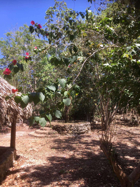 Hammocks_and_Ruins_Riviera_Maya_What_to_Do_Puerto_Morelos_Cenotes_Verdo_Lucero_37.jpg
