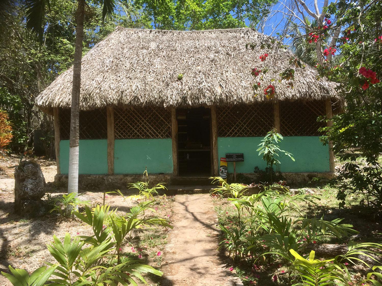 Hammocks_and_Ruins_Riviera_Maya_What_to_Do_Puerto_Morelos_Cenotes_Verdo_Lucero_15.jpg