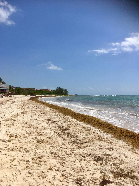 Hammocks_and_Ruins_Riviera_Maya_What_to_Do_Playa_Del_Carmen_Beaches_Grand_Coral_14.jpg