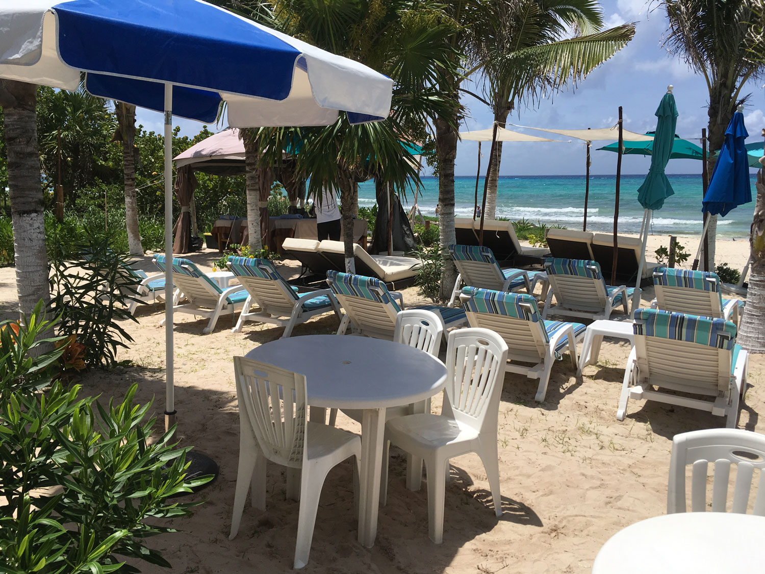 Beach chairs for rent.