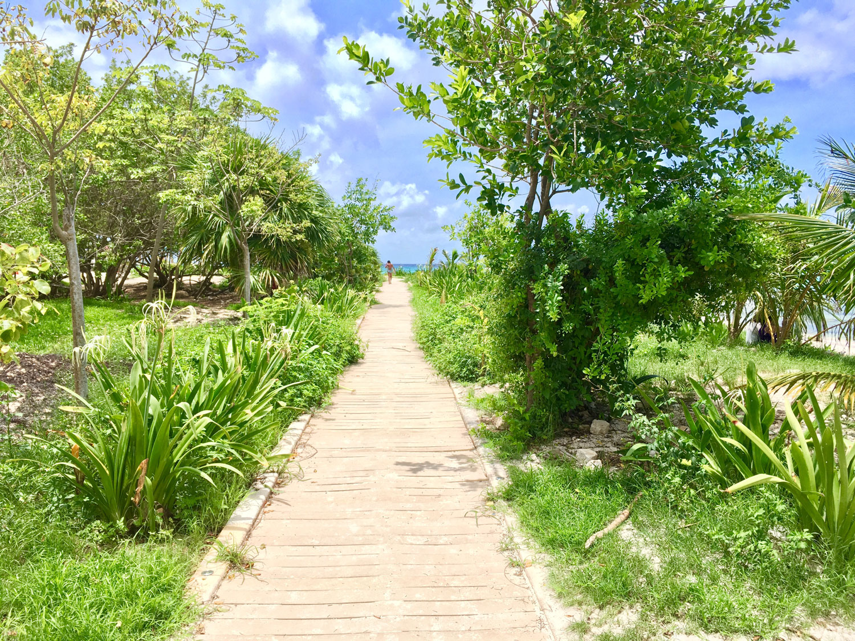 Hammocks_and_Ruins_Riviera_Maya_What_to_Do_Playa_Del_Carmen_Beaches_Punta_Esmeralda_33.jpg