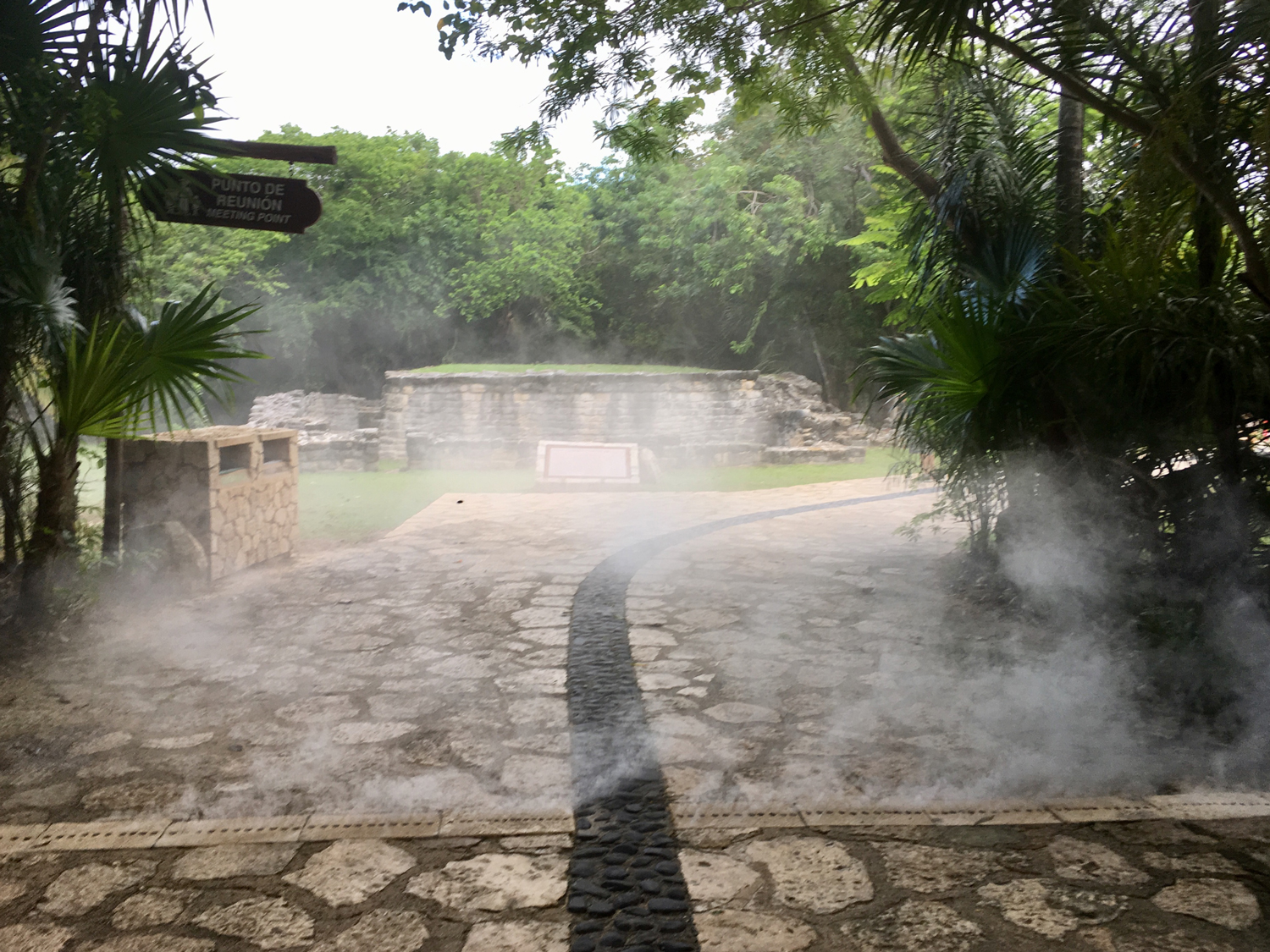 Copal smoke coming from an underground source during the ritual.