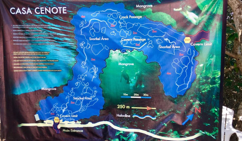 Hammocks_and_Ruins_Riviera_Maya_What_to_Do_Playa_Del_Carmen_Tulum_Cenotes_Casa_Cenote_26.jpg