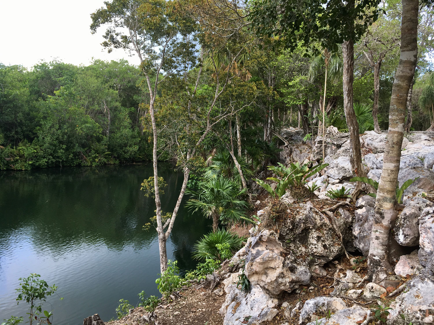 The raised platform of the Jaguar Complex by the cenote.