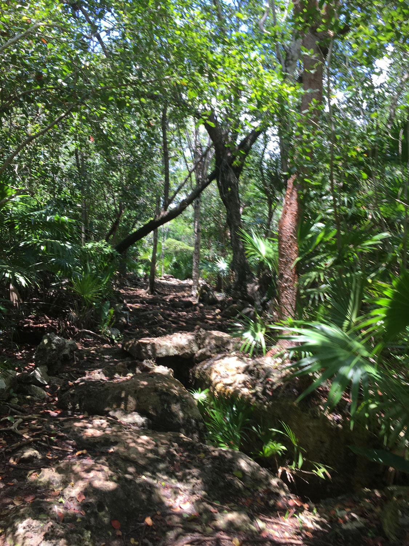 Hammocks_and_Ruins_Riviera_Maya_What_to_Do_Tulum_Best_Cenotes_Mexico_Cenote_Caleta_Tankah_8.jpg