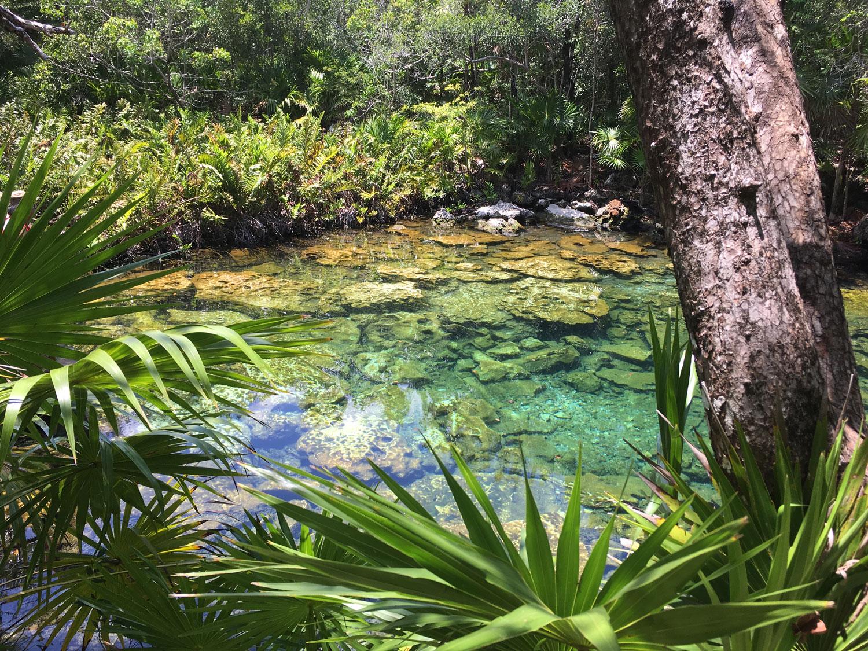 Hammocks_and_Ruins_Riviera_Maya_What_to_Do_Tulum_Best_Cenotes_Mexico_Cenote_Caleta_Tankah_17.jpg