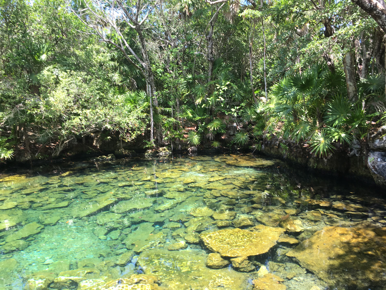 Hammocks_and_Ruins_Riviera_Maya_What_to_Do_Tulum_Best_Cenotes_Mexico_Cenote_Caleta_Tankah_14.jpg
