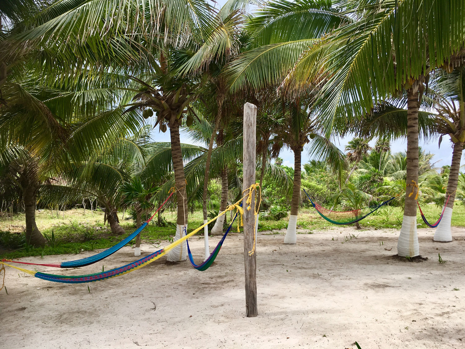 A resting area. Left: the path to the cenote from the beach.