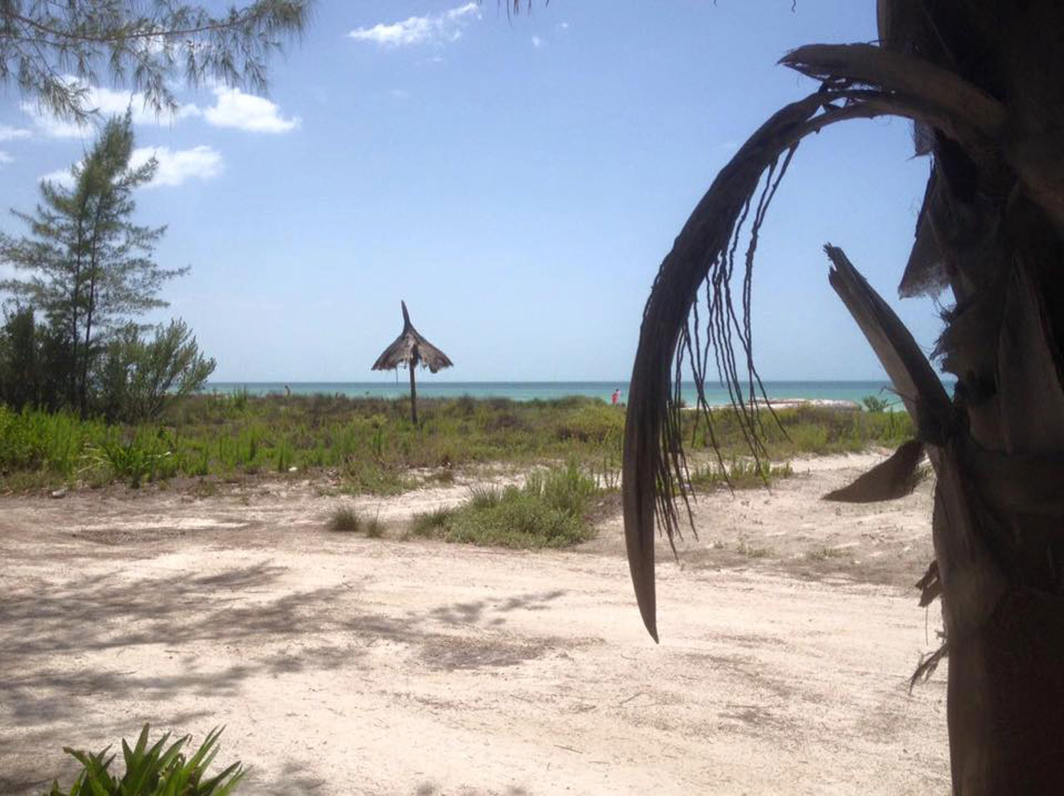 Hammocks_and_Ruins_Riviera_Maya_What_to_Do_Cancun_Playa_Del_Carmen_Islands_Isla_Holbox_36.jpg