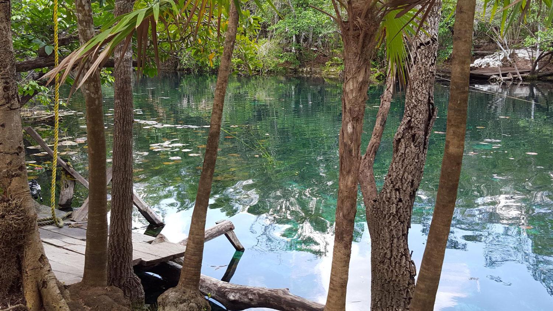 Hammocks_and_Ruins_Blog_Riviera_Maya_Mexico_Travel_Discover_Cenotes_Car_Wash_2.jpg