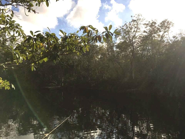 Hammocks_and_Ruins_Blog_Riviera_Maya_Mexico_Travel_Discover_Cenotes_Car_Wash_6.jpg