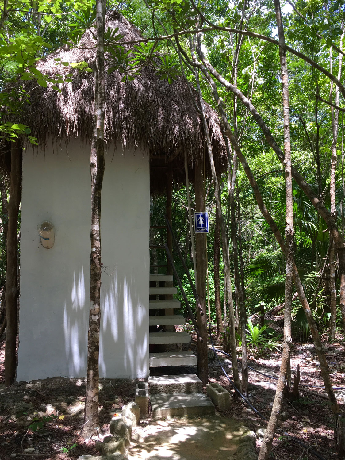 Rustic bathrooms in the jungle.