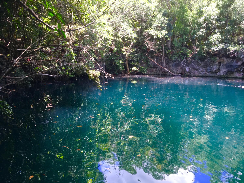 Hammocks_and_Ruins_Blog_Riviera_Maya_Mexico_Travel_Discover_Cenotes_Scuba_Dive_Cenote_Angelita_5.jpg