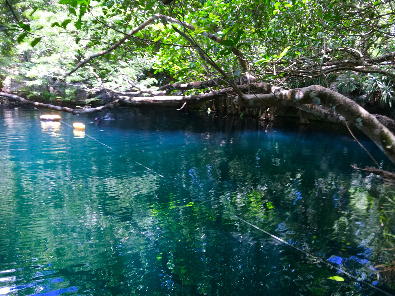 Hammocks_and_Ruins_Blog_Riviera_Maya_Mexico_Travel_Discover_Cenotes_Scuba_Dive_Cenote_Angelita_6.jpg