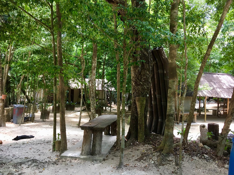 Hammocks_and_Ruins_Blog_Riviera_Maya_Mexico_Travel_Discover_Cenotes_Scuba_Dive_Cenote_Angelita_18.jpg