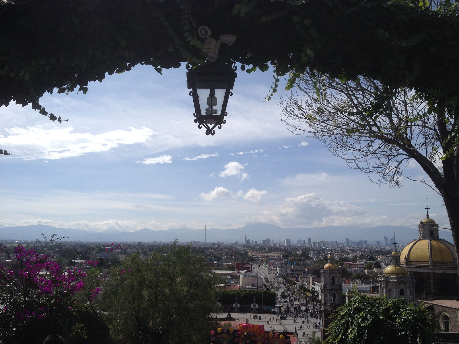 The view from the old Basilica de Guadalupe.