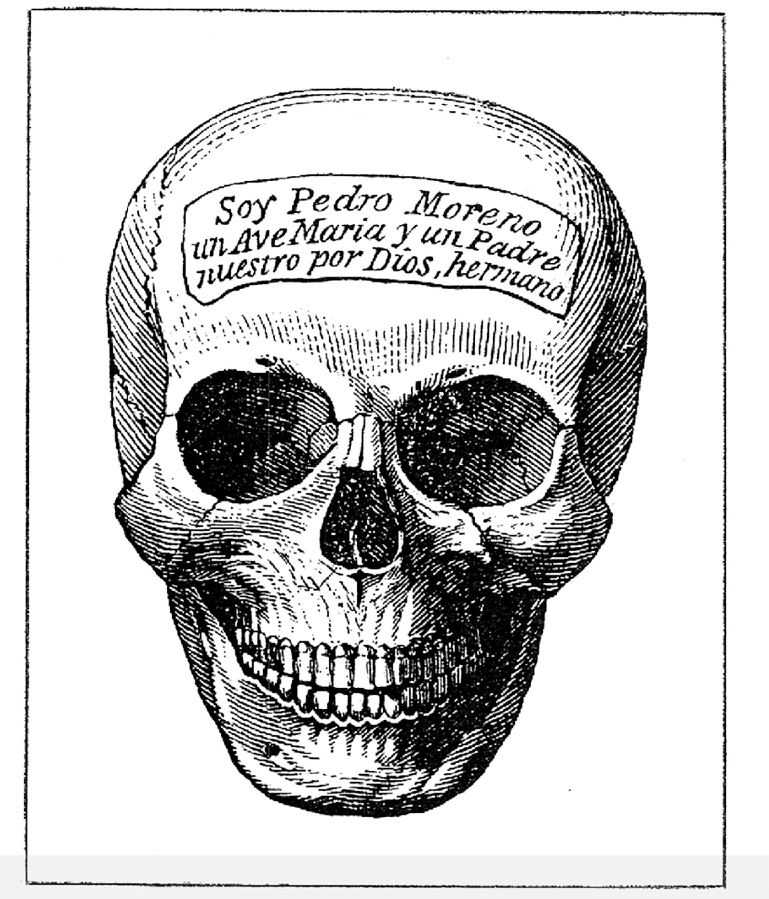 Catherwood's drawing of an engraved funerary skull from a rural Maya house, scanned from  Incidents of Travel in Yucatan  (1843).