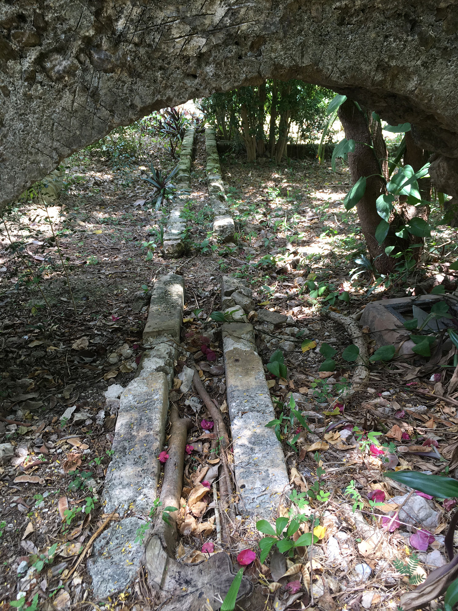Hammocks_and_Ruins_Mayan_Mythology_What_to_Do_Mexico_Maya_hacienda_san_jose_cholul_33.jpg