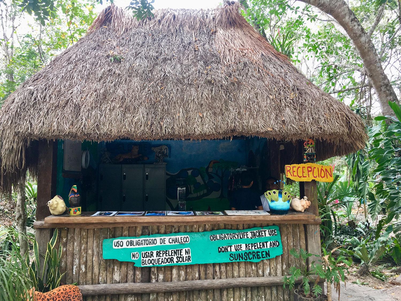 Hammocks_and_Ruins_What_to_Do_Mexico_Maya_cenote_7_bocas_54.jpg