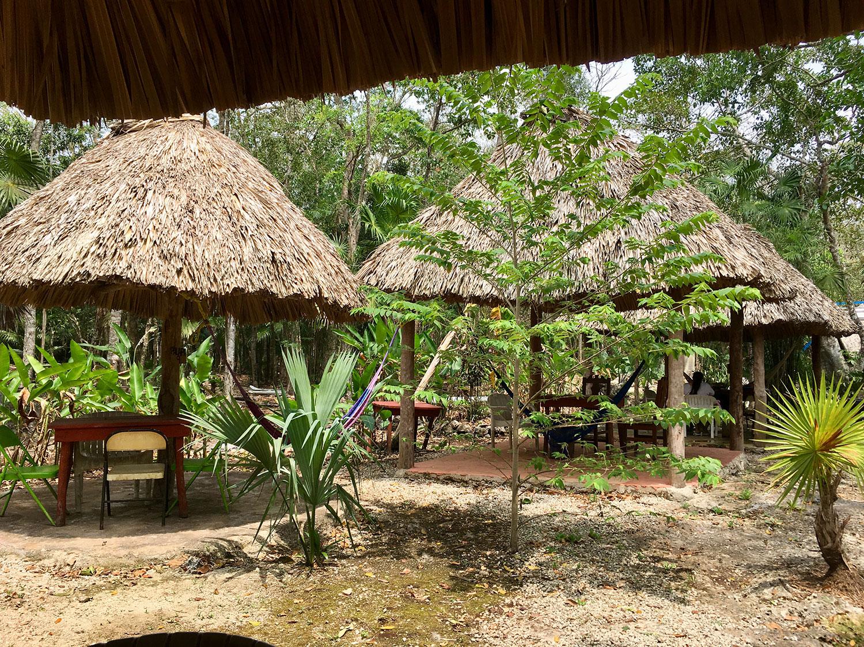 Palapas in the jungle park for picnics.