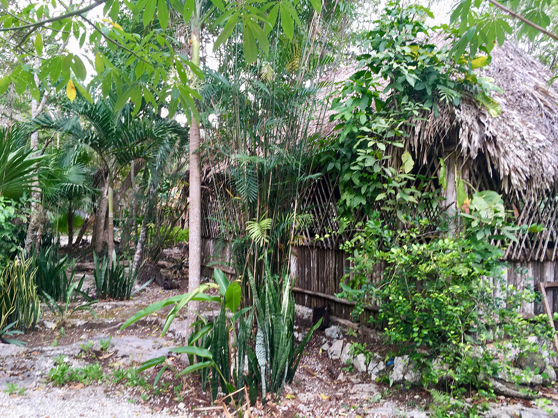 The village house inside the cenote park.
