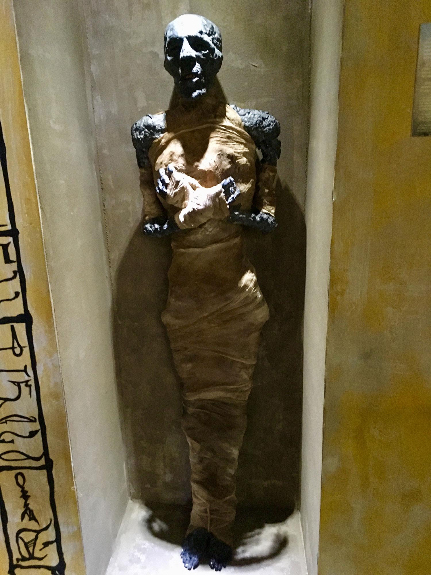 Egyptian mummies.