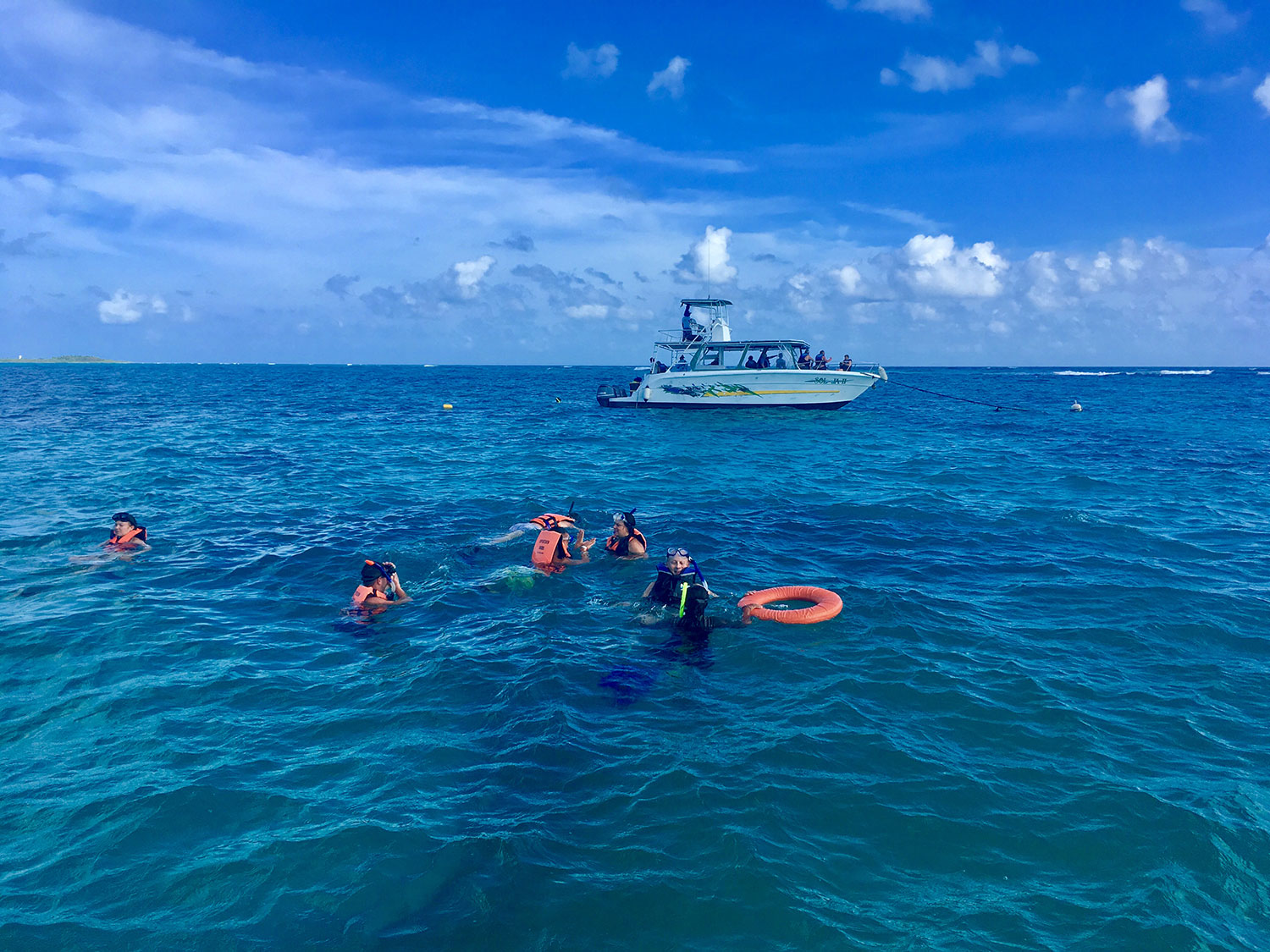 Our group snorkelling, 2019.