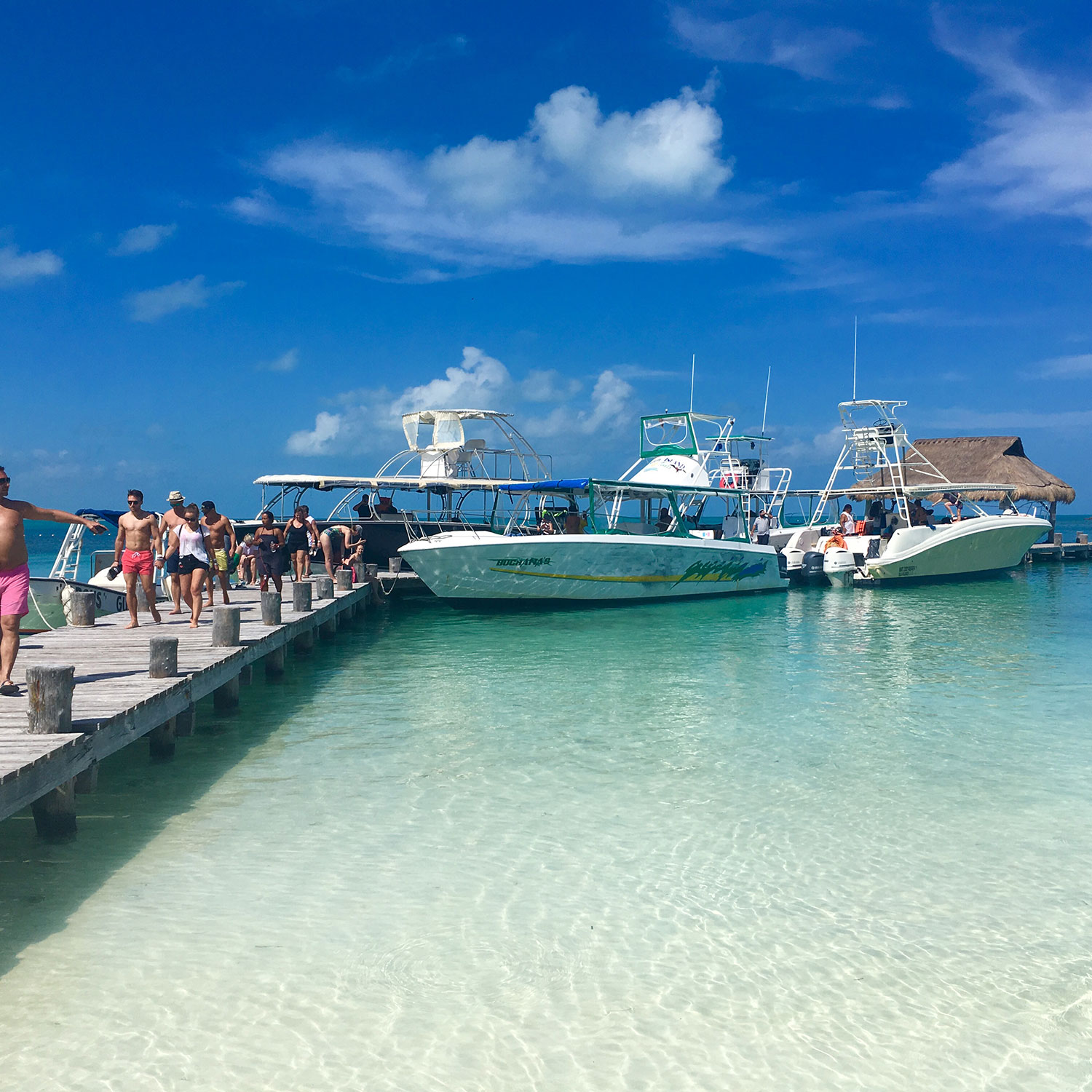The pier. 6 boats arrive daily, each has maximum 30 visitors.
