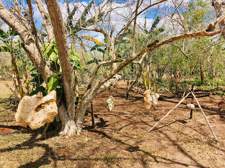 Hammocks_and_Ruins_What_to_Do_Mexico_Mayan_pyramids_cenote_Kikil_9.jpg