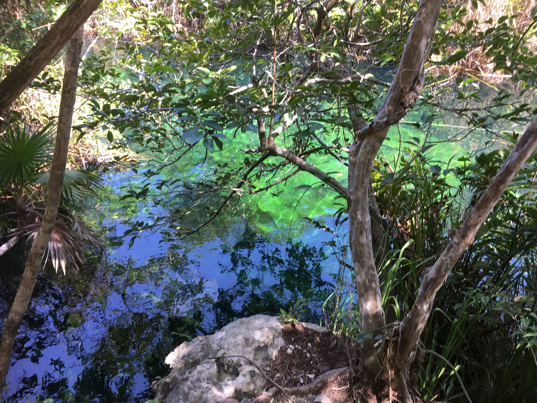 Cenote Escondido.