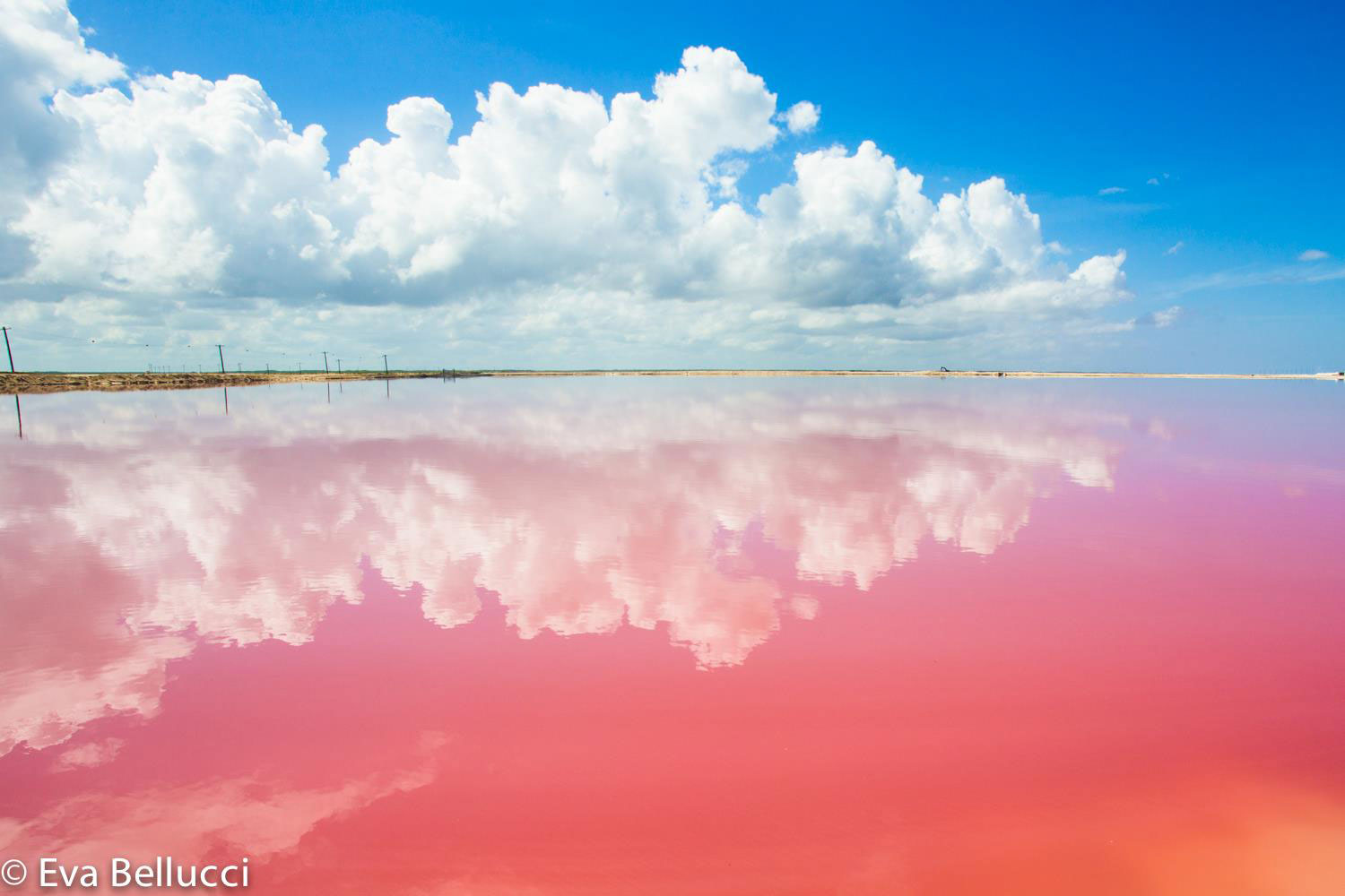 The pink lake at Las Coloradas.
