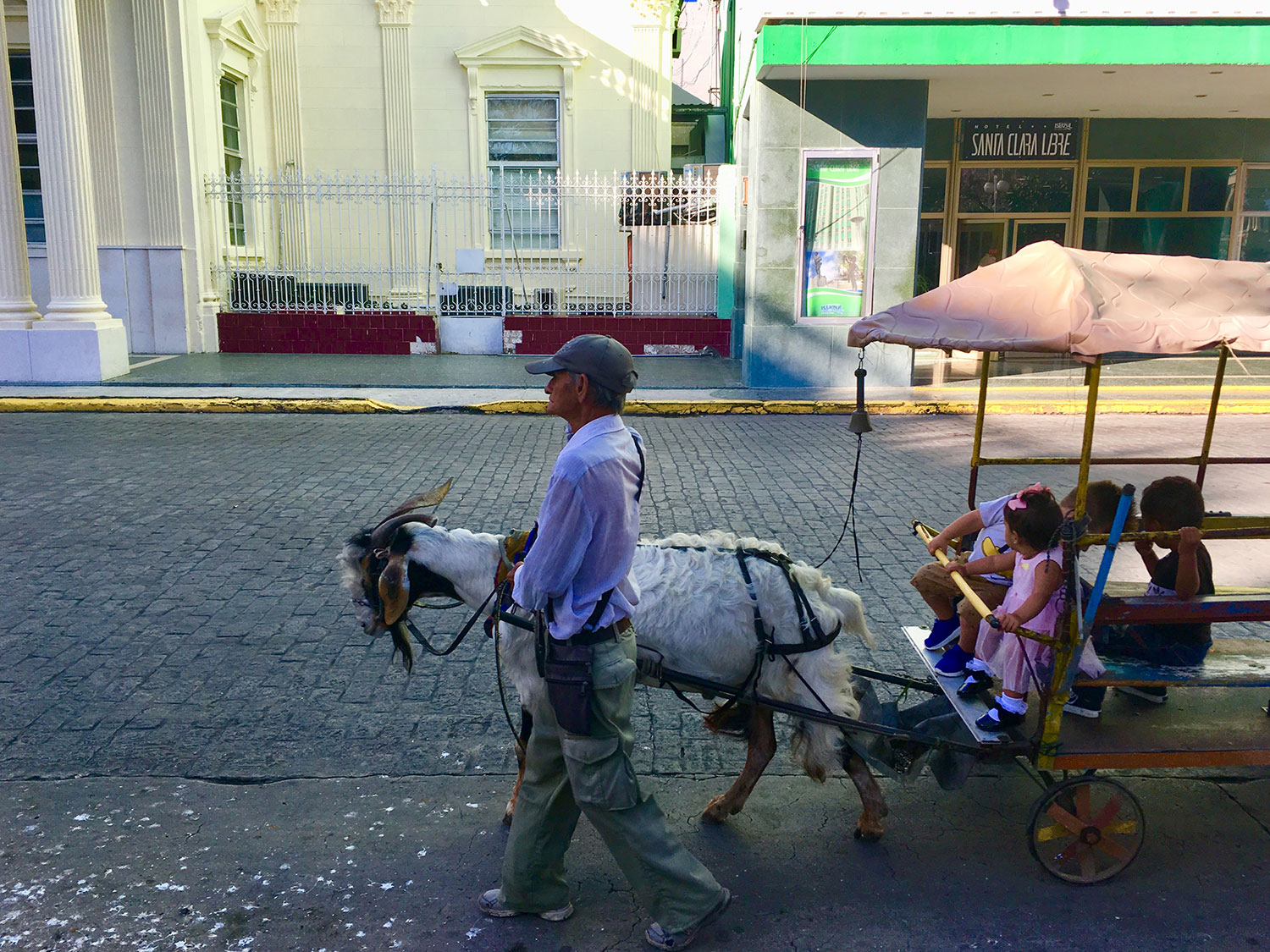 Children riding on a goat carriage.
