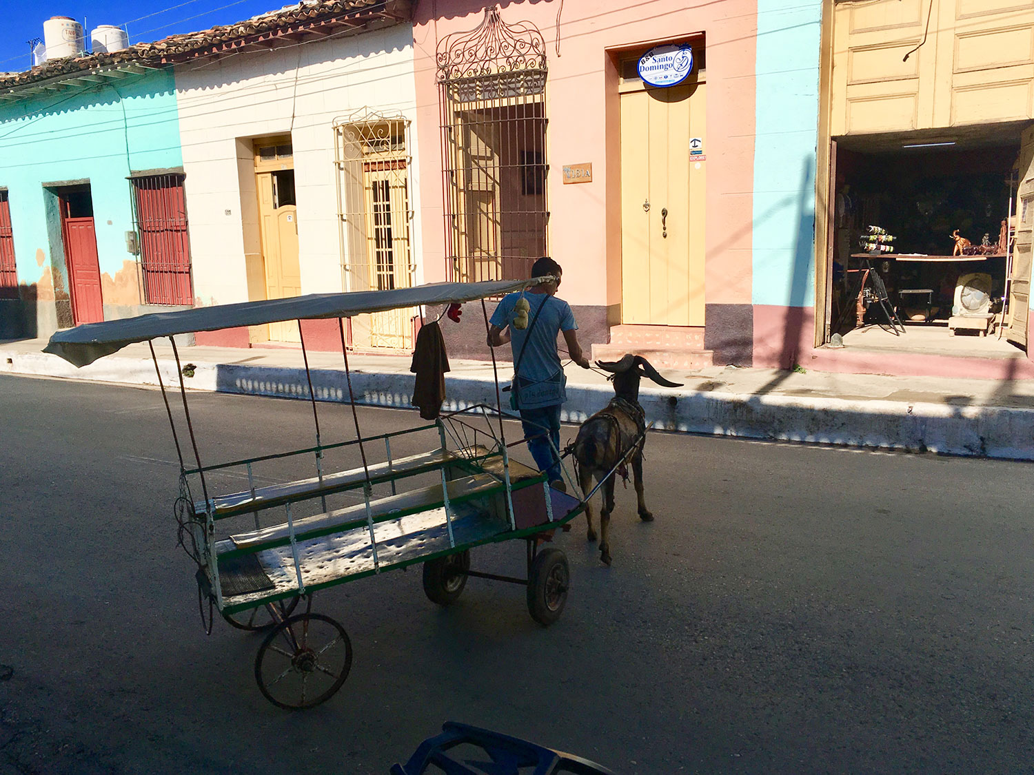 Goat rides for children are popular in Cuba as a form of entertainment.