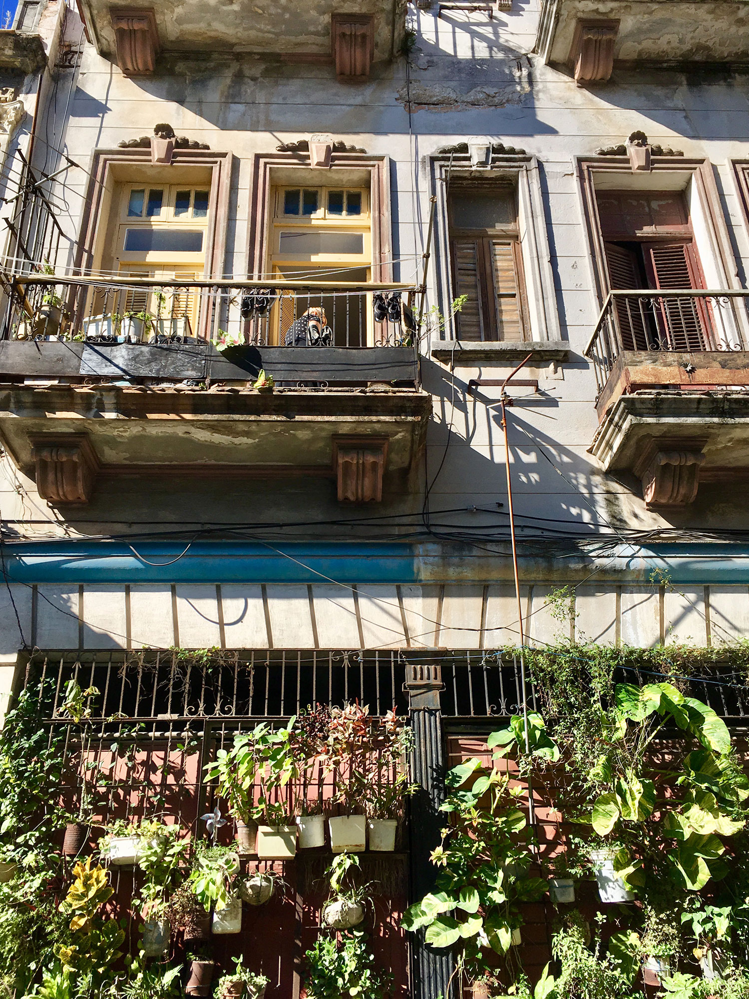 Hammocks_and_Ruins_What_to_Do_Cuba_Havana_island_socialist_7.jpg