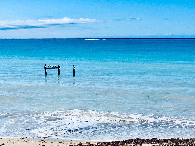 Hammocks_and_Ruins_What_to_Do_Cuba_island_beach_Ancon_12.jpg